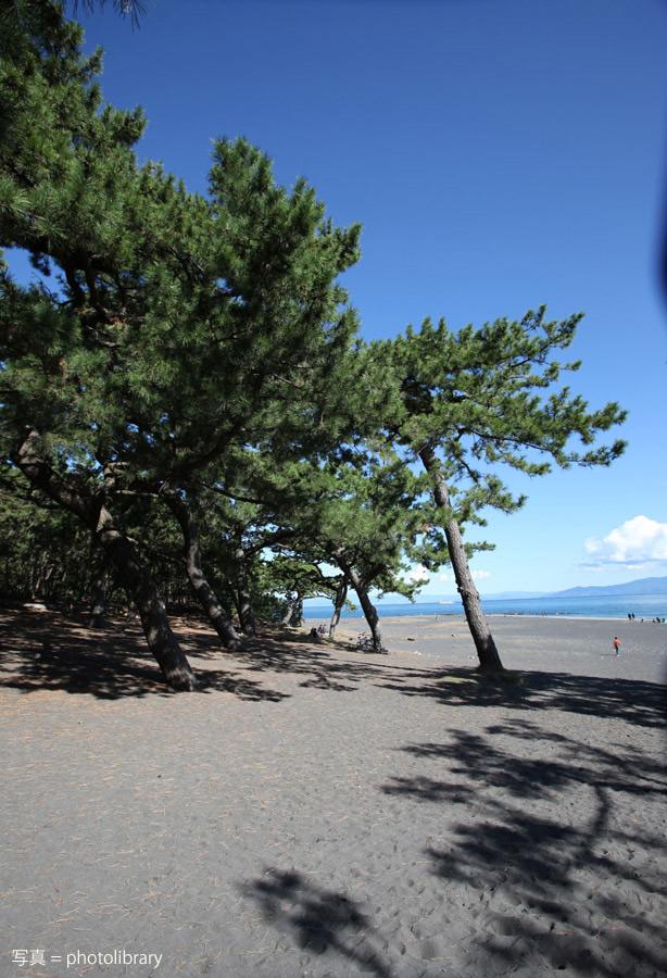 静岡 三保の松原