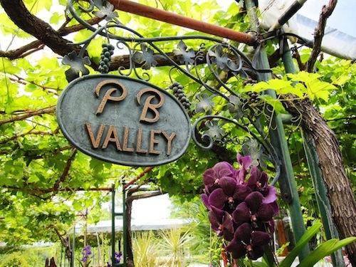 新緯度帯ワイン産地のアクティビティ