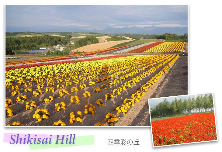 Shikisai Hill