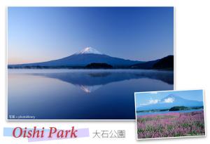 The Inverted Fuji at Oishi Park