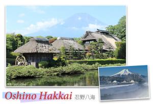 Oshino Hakkai