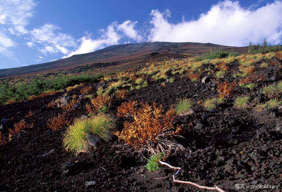 Mt. Fuji's Fifth Stage