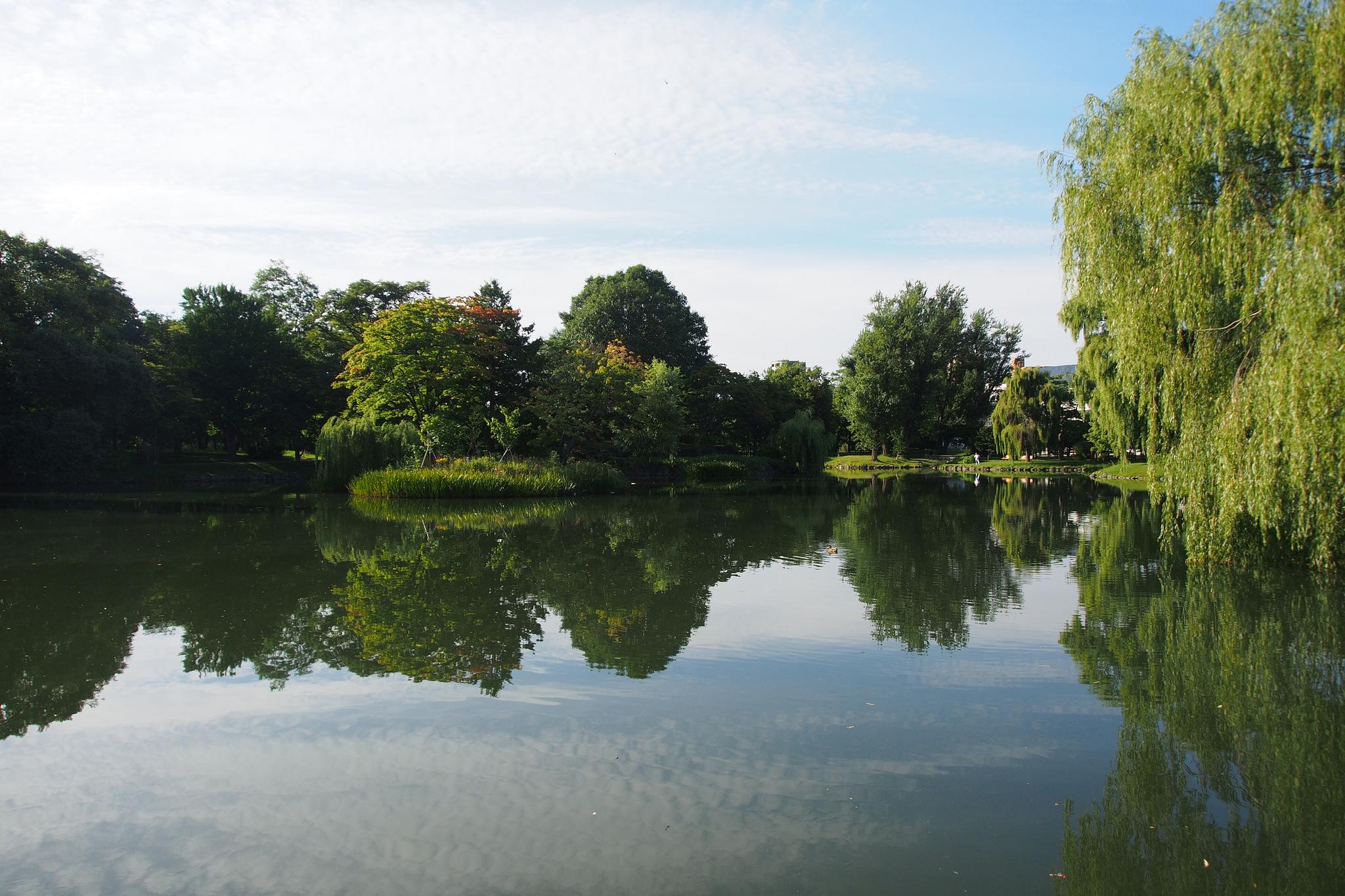 Nakajima Park
